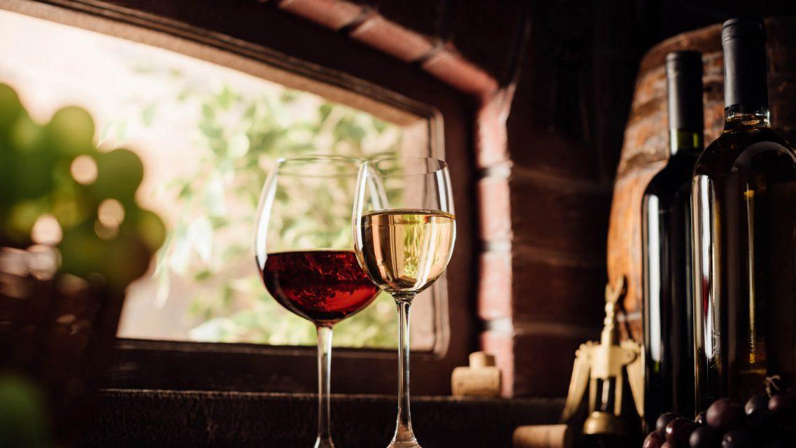 Dégustation de vins Bulgare à Sofia
