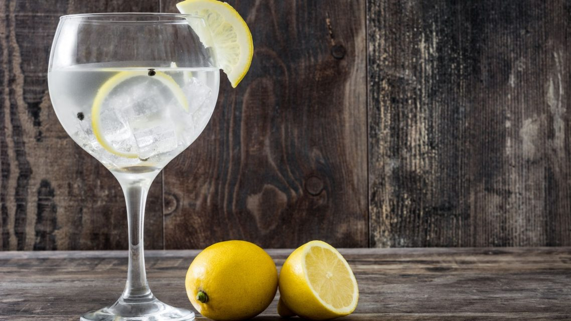 Dégustation de gin tonic à Barcelone